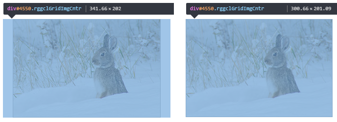 How to check dimensions of the image container