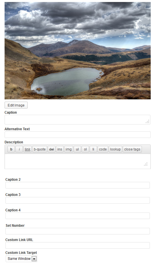 wordpress-plugin-media-library-custom-fields-543x928